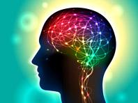Анализ мозга показал, что заставляет людей избегать риска