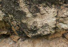 Мумие - особенности, полезные свойства и противопоказания